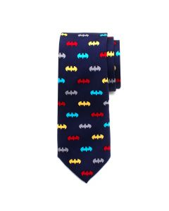 Batman Big Boys' Silk Tie