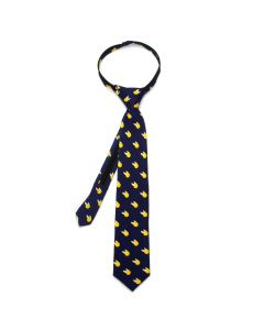 Golden Snitch Boys' Zipper Tie